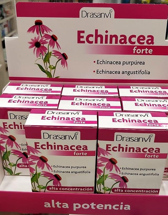 Echinacea es un complemento alimenticio que integra en una cápsula dos especies de Echinacea: Echinacea purpurea y Echinacea angustifolia, ambas añadidas en forma de extractos secos estandarizados. La estandarización asegura una homogeneidad en la composición.